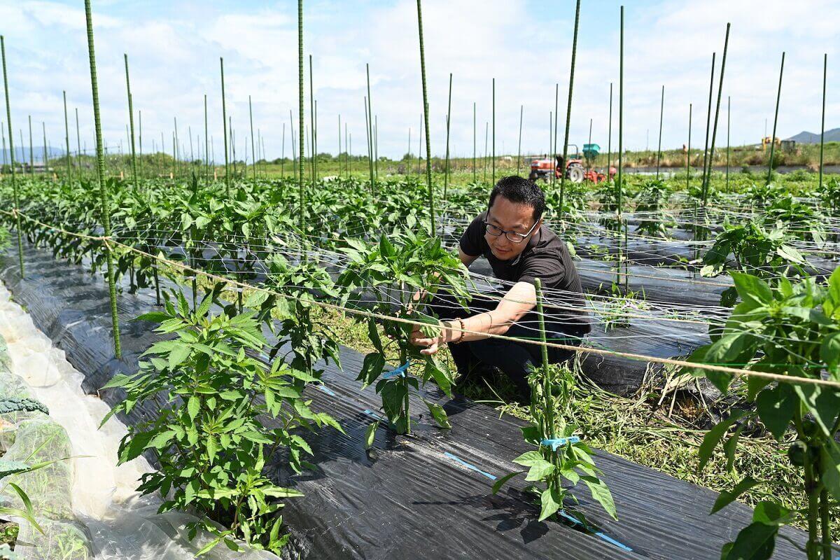 オーガニック野菜をより身近に。 GOOD NATURE STATIONが 生産者とともに目指すもの