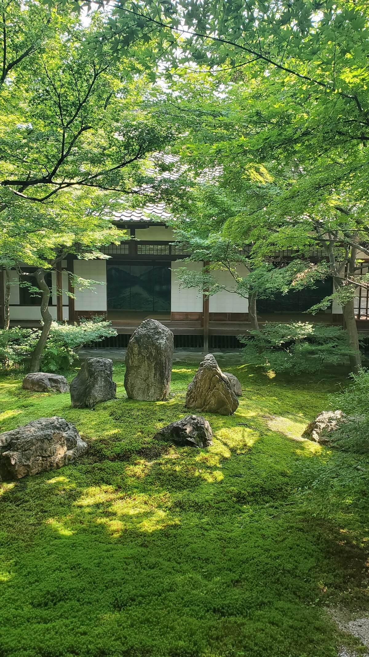 「日本庭園の見方」ランチ付きトークショー!《8/25(水) 開催》