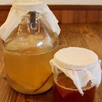 発酵食堂カモシカによる夏の飲む発酵講座~台所にコンブチャ常備のススメ~《8月25日》