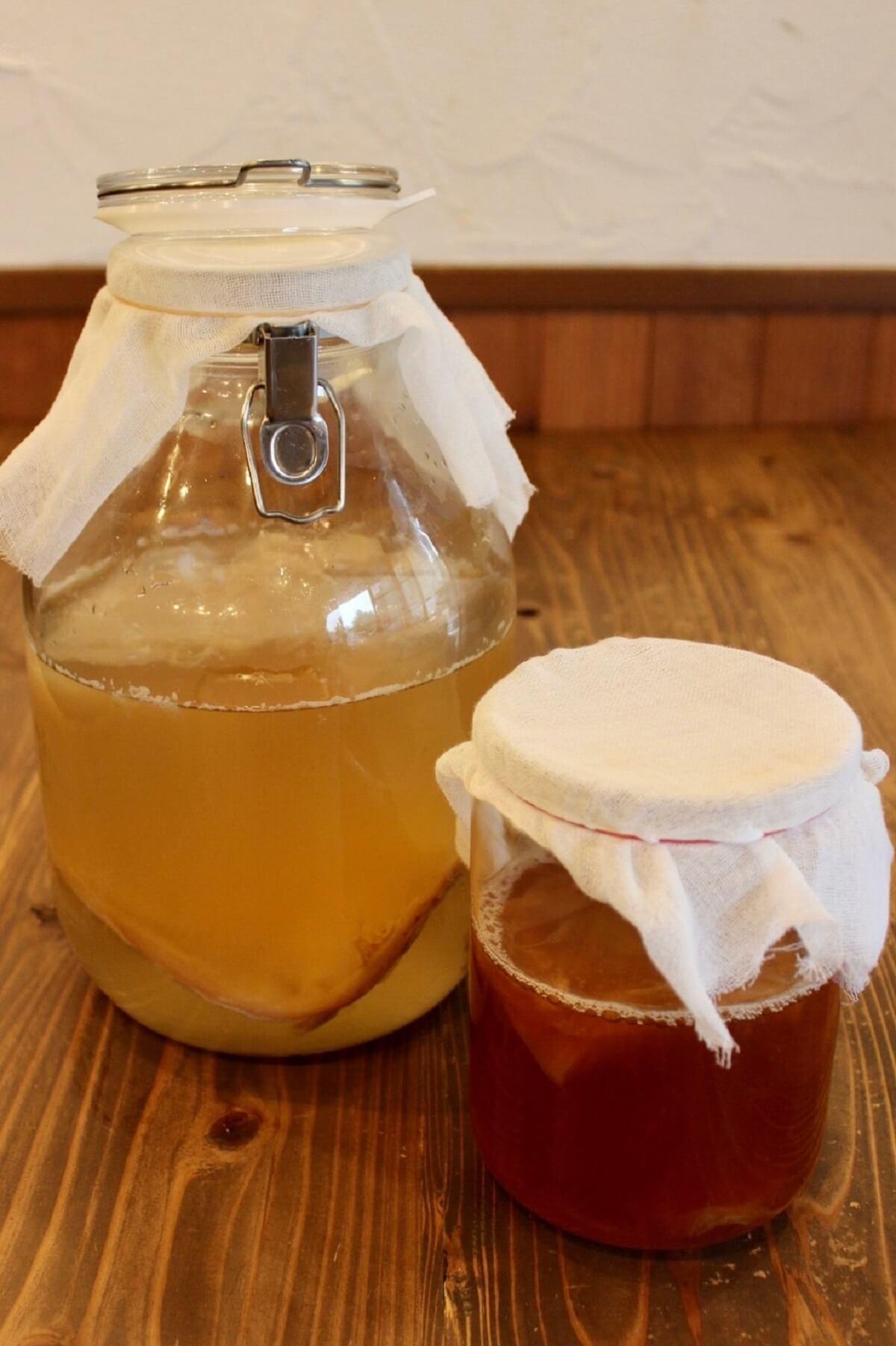 【満員御礼】発酵食堂カモシカによる夏の飲む発酵講座~台所にコンブチャ常備のススメ~《7月14日》